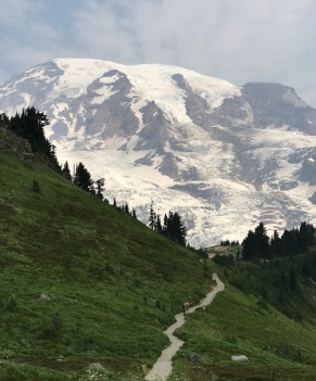 Mt Rainier from Alta Vista trail